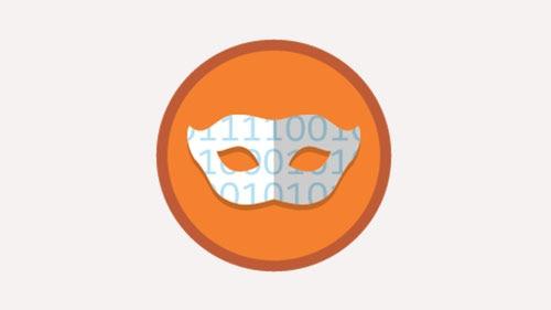 Data Mask logo